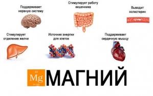 Недостаток магния в организме.